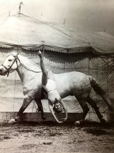 "Gracie Hanneford 1937 was one of the circus performers in her families travelling show ""The Riding Hannerfords""."