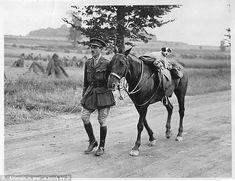 An officer lets a dog take to the saddle on the Albert- Amiens road in France, in 1916...