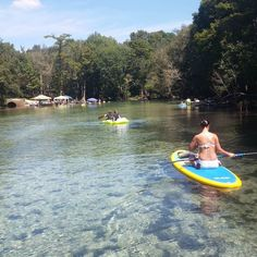 #paddleboarding #florida #floridalife #cypresssprings by fox21238