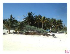 Playa Paraíso Tulum, México #Travel #Viaje #destination #summer #holidays #vacation #virgin #beach #palmtree #palmera #sand #white