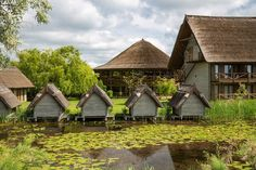 5 excursii pe care sa le faci in Delta Dunarii Tour Around The World, Around The Worlds, Delta House, Danube Delta, Group Tours, Travel Tours, Horseback Riding, Tourism, Buildings