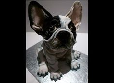 Would You Eat A Doggy Style Canine Cake?