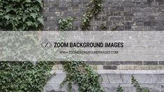 The Zoom Background Image Starter Pack contains a collection of 300 awesome, high quality images that are sized perfectly for your Zoom virtual meetings. Digital Backgrounds, Historical Art, Camera Settings, Studio Portraits, Brick Wall, High Quality Images, Background Images, Ivy, Website