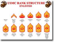 The Marine Corps promotion system is a bit different than other branches of the U. Here's how enlisted Marines can move up the ranks. Usmc Ranks, Marine Corps Ranks, Military Ranks, Military Mom, Military Party, Military Terms, Military Signs, Military Insignia, Military Service