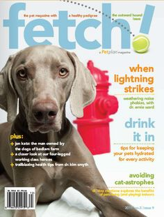 The Outward Hound issue of fetch! magazine, a quarterly pet health publication from Petplan #pet-insurance.  In this issue: Interview with author Jon Katz, a closer look at working dogs, the benefits of keeping pets indoors, tips for weathering noise phobias, pet health tips and more!