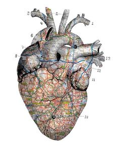 Heart with map overlay