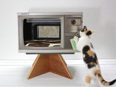 TV Hideout - An outdated television becomes a retro-cool perch for your little kitty to snuggle in.  - 10 Homemade Cat Beds Too Cute to Resist