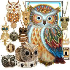 Pick an owl, any owl!