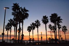 ENDLESS SEASIDE SUMMER:  HUNTINGTON BEACH  |  Attraction Highlights of California s Pacific Coast Highway 1