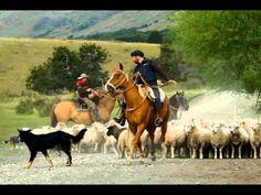 PATAGONIA CHILENA - GRANDES INTERPRETES.Música chilena folklorica seleccionada por Cecil Gonzalez - YouTube