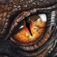 Dragon Eyes - My most beautiful tattoo list Mythical Creatures Art, Fantasy Creatures, Dragon Eyes, Smaug Dragon, Hobbit Dragon, Dragon Eye Drawing, Cool Dragon Drawings, Dragon Artwork, Dragon Pictures