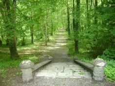 the old steps that led to the grand house Lady Gregory used to live in at Coole Park still remain- but the house is long gone due to a fire destroying it last century Grand Homes, Garden Bridge, Brows, Ireland, Past, Places To Visit, Old Things, Spirituality, Outdoor Structures