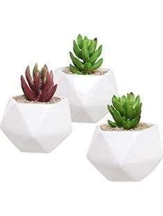 Set of 3 White Ceramic Geometric Design Succulent Plant Pots / Miniature Indoor Plant Holders - MyGift® ❤ MyGift