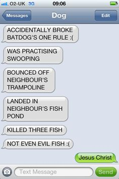 Texts from Rhys lol Funny Dog Texts, Funny Text Memes, Text Jokes, Cute Texts, Funny Text Messages, Funny Fails, Tumblr Funny, 9gag Funny, Epic Texts