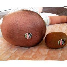 今しかできない!赤ちゃんの「ユニークな写真の撮り方」まとめ♡次なるブームは…!?の画像2