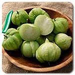 Organic Toma Verde Tomatillo