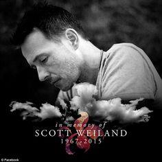 Scott Weiland : R. ex Stone Temple Pilots/ ex Velvet Revolver Scott Weiland, Stone Temple Pilots, Music Love, Rock Music, My Music, Amazing Music, Music Stuff, Chester Bennington, Kurt Cobain