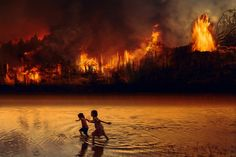 Free Image on Pixabay - Fire, Forest Fire, Children, Fear Blockchain, Lucas Gabriel, Crime, Amazon Rainforest, Environmental Science, World's Biggest, Global Warming, Destruction, Climate Change