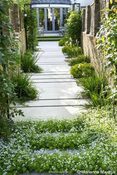 gravel path with inlaid bluestone breaks | Charlotte Rowe Garden Design