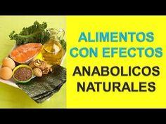 Alimentos Anabolicos Naturales - http://ganarmusculoss.blogspot.com  Alimentos para ganar masa muscular que contienen efectos anabolicos que nos ayudan en la creacion de musculo y perdida de grasa. Alimentos para los musculos: Ajo y cebolla - El ajo y la cebolla son alimentos anabolicos naturales porque elevan de forma natural la testosterona, esto viene bien en procesos anabólicos. Tomar ajo antes de entrenar potencia los niveles de glucosa en sangre y da fuerza de manera natural.