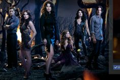 Dash, Freya, Joanna, Ingrid, Wendy, Killian