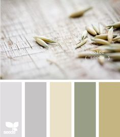 color seeds - Love this mix, so soft and modern! I could see all walls beige or grey, white trim, accents would be green or olive