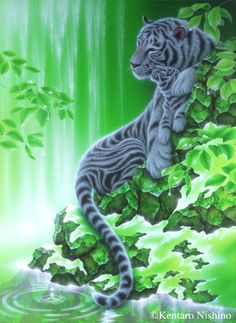 "I Will Stand By You"" White Tigers Gallery Bigcats - Art of Kentaro Nishino"