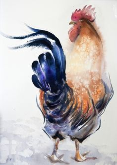 red-salty-rooster 28*38 sm watercolor on paper @ Olga Flerova http://www.saatchiart.com/account/profile/425625