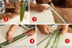 Wanda shows us how to prepare flax leaves to make a flax flower. Flax Weaving, Basket Weaving, Flax Flowers, Paper Flowers, Flower Arrangement Designs, Flower Arrangements, Maori Patterns, Weaving Process, Weaving Patterns