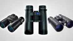 Choosing Binoculars: Field of View and Close Focus | All About Birds