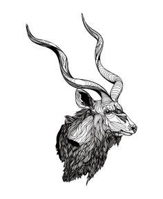 Kudu. by Bryan Gallardo BS13, via Behance