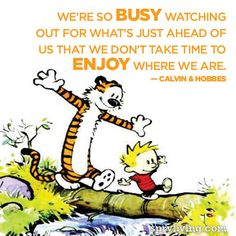 Calvin & Hobbes #quote spryliving.com Cartoons Quotes, Calvin And Hobbes Quotes, Calvin & Hobbes, Quotes Calvin And ...