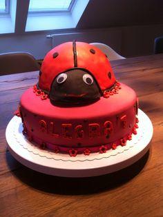 Ladybug! Marienkäfer - passend zu den Krabbelschuhen!