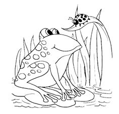 Ladybug And Frog Coloring Pages