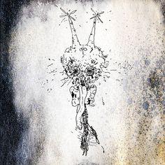 Refulgo cover art