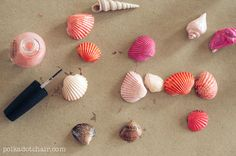 Fun Crafts To Do With Nail Polish | Best Nail Polish Crafts | DIY Projects and Arts and Crafts Ideas Using Nail Polish | DIY Painted Seashells http://www.thrillbites.com/amazing-nail-polish-craft-ideas
