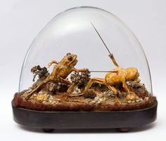 The above picture was taken inside Maison Matin, the French time-capsule mansion. It shows two stuffed frogs showing 'human nature' by having sword fight between them.