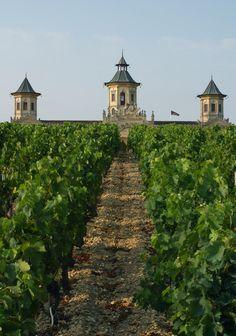 Vineyards and Winery, Château Cos d'Estournel - Médoc - Aquitaine - France by CRTA - Laurent Reiz