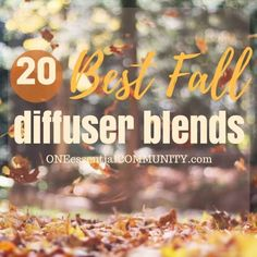 20 best fall diffuser blend recipes -- easy, non-toxic ways to make your home…