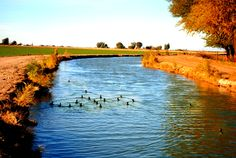 Canal at Holtville Imperial Valley California
