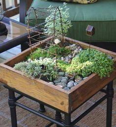 Mini Indoor Fairy Gardens Provide The Children or Grandchildren With an Imagination Inspired Activity!