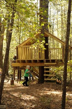 My favorite treehouse