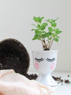 Start your herbs for summer now with these artful egg cup seedling starters. A unique housewarming gift idea! Growing Seedlings, Face Planters, Ceramic Planters, Unique Housewarming Gifts, Egg Cups, Pretty Face, Starters, Easy Diy, Diys
