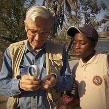 The Guide: A Biologist in Gorongosa | HHMI's BioInteractive