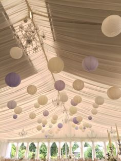 60 cream, lace, lavender paper lanterns
