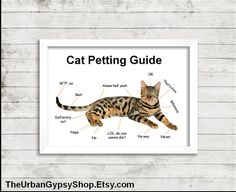 The puuurfect poster for the crazy cat lady! The Cat Petting Guide is a digital download poster. Just purchase. Print. Frame. Available at theurbangypsyshop.etsy.com