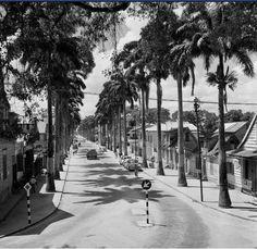 Zwartenhovenbrugstraat 1955