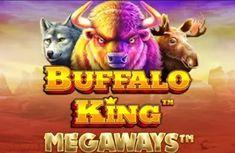 Demo Slot Pragmatic – Buffalo King Megaways Slot, Buffalo, King, Water Buffalo