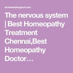 The nervous system | Best Homeopathy Treatment Chennai,Best Homeopathy Doctor…