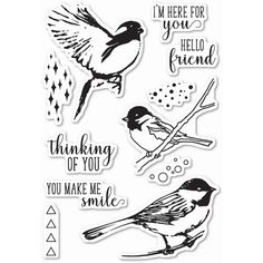 Memory Box Clear Stamps BIRD SANCTUARY Open Studio CL5201